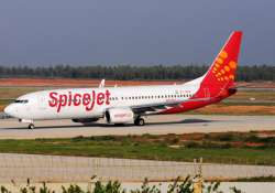 spicejet reports worst quarterly loss of rs 559 crore