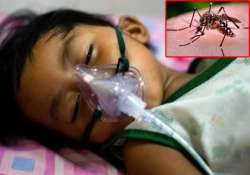 dengue outbreak in delhi know the difference between myths