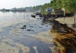 indian side not affected by bangladesh oil spill officials