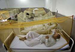 dengue cases in delhi cross 200 rise of over 42 pc in one