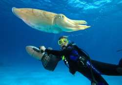 know more about scuba diving