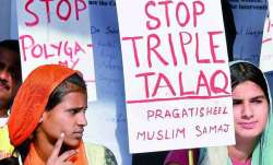 plea to make instant triple talaq a penal offence