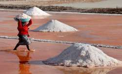 Top Indian salt brands contain deadly cyanide: US lab report