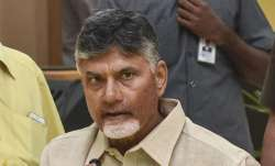Telugu Desam Party chief N Chandrababu Naidu