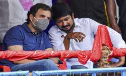 Congress leader Rahul Gandhi with DMK Youth Wing Secretary Udhayanidhi Stalin witnesses Jallikattu a