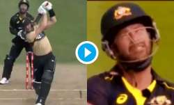 martin guptill, matthew wade, nz vs aus, new zealand vs australia, nz vs aus 2021, nz vs aus t20
