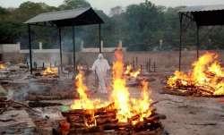bhopal coronavirus deaths