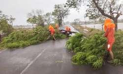 Cyclone Tauktae gujarat death toll