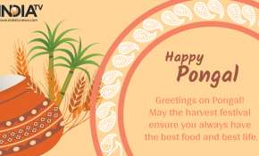 happy Pongal 2021: Wishes, Quotes, Facebook, WhatsApp messages, Greetings, SMS, HD images and GIFs