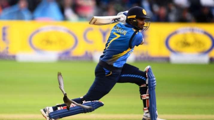 Sri Lanka captain Dasun Shanaka urges for throw-down coach like India's 'Bawwa'